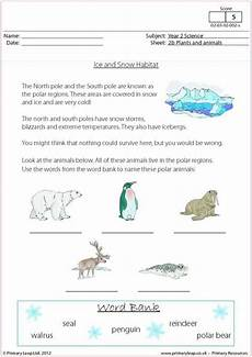 science worksheets primary 12357 42 best images about science printable worksheets primaryleap on