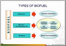 east asia summit energy cooperation task force bio fuel database in east asia indnesia