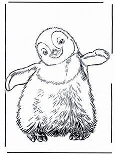 penguin 3 zoo