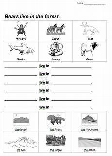 animals and their habitats worksheets for grade 2 animal habitat worksheet animal habitats social studies worksheets animal worksheets