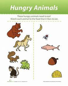 worksheets with animals and their food 14086 what do animals eat