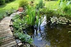 Pflanzen Am Teich Teich Bepflanzen Mehr Als 70 Ideen Archzine Net