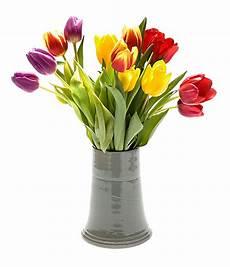 fiore con a imagem para foto de flores tulipas amarela vermelha