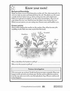 science plants worksheets for 3rd grade 13627 3rd grade 4th grade science worksheets your roots greatschools