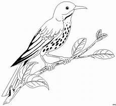 gepunkteter vogel auf ast ausmalbild malvorlage tiere