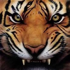 Unduh 80 Gambar Harimau Gigit Pedang Terbaik Hd Pixabay Pro