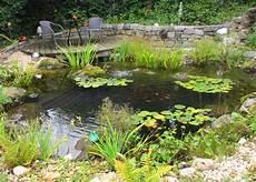 Teiche Biotope Gartenanlage Gartengestaltung Gartenbau