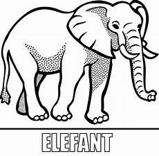 malvorlage elefant zum ausdrucken