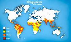 dengue fieber map of dengue fever spread stock illustration illustration of africa 53758694