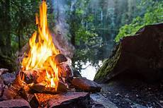 the forest feuerstelle royalty free cfire pictures images and stock photos
