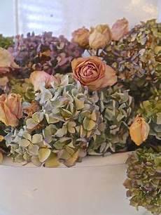 getrocknete hortensien dekorieren home decor idea box by j hometalk