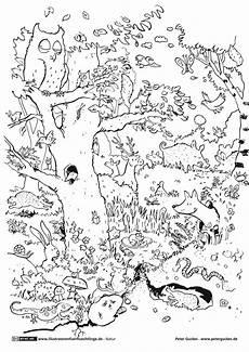 Malvorlagen Ninjago Neu Ninjago Lloyd Ausmalbild Frisch Ausmalbilder Ninjago