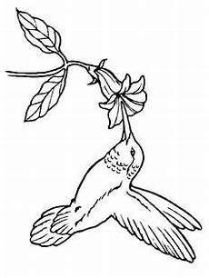 Xenia Malvorlagen Novel Hier Finden Sie Sch 246 Ne Blumen Ausmalbilder Zum Ausdrucken