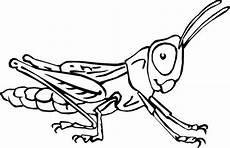 Malvorlagen Insekten In Insekten Ausmalbilder Animaatjes De