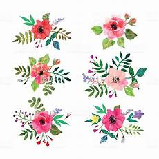 design fiori vector flowers set floral collection with watercolor