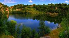 hintergrundbilder natur sommer see strauch 1920x1080