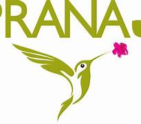 prAna_logo