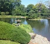 Image result for Normandale Japanese Garden Bloomington MN ...