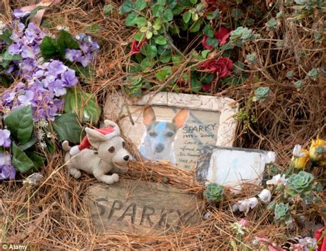 Will My House Lose Value If I Bury Our Dog In The Garden