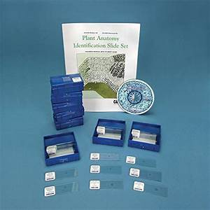 Plant Anatomy Identification Classroom Set With Cd