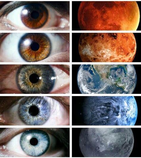 images  brown eye appreciation