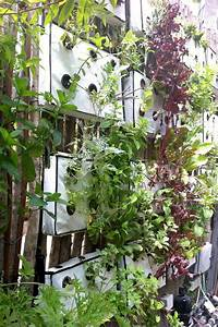 Urban Gardening Definition : urban agriculture greenery by chiefkahuna391 162 other ideas to discover on pinterest ~ Eleganceandgraceweddings.com Haus und Dekorationen