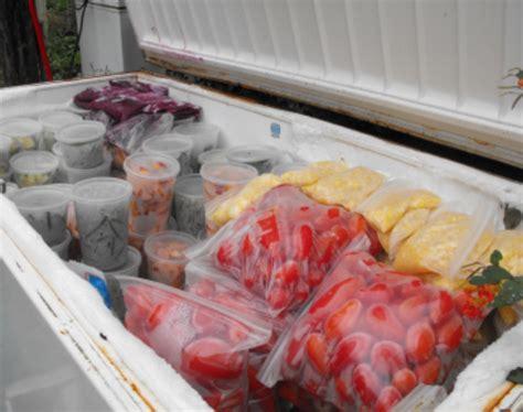 food freeze cooking freezer tips mythirtyspot timeline ts don