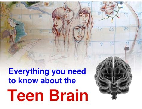 Everything You Need To Know About The Teen Brain