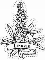 Texas Coloring State Flower Bluebonnet Pages Flowers Patio Drawings Clip Line Learning Drawing Printable Revolution Paintbrush Privacy Policy Indian Outline sketch template
