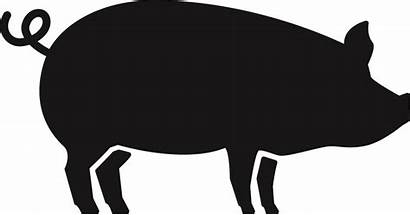 Pig Clipart Pictograms Eu Approved Clip