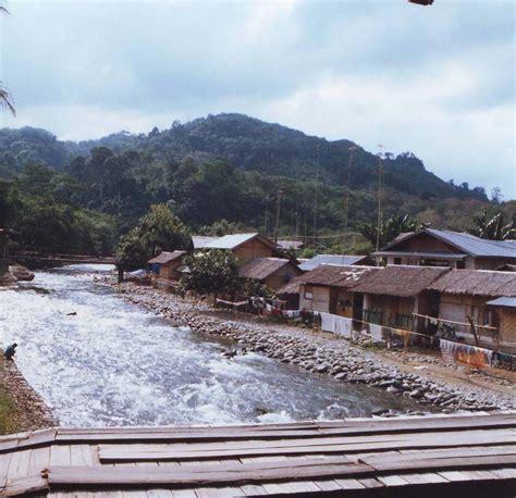 bukit lawang sumatra travel guide