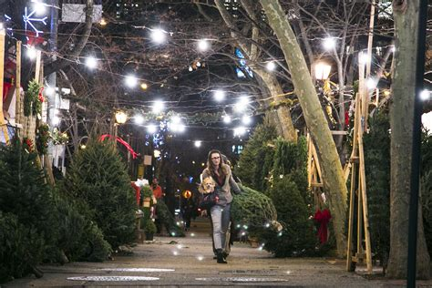 a peek behind the curtain at new york s christmas tree trade