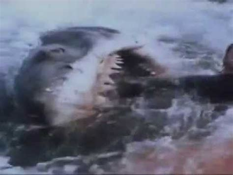 Lo Squalo 5  Jaws 5  Trailer Youtube