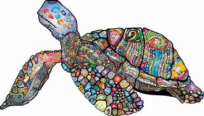 Turtle Sea Animal Colorful Vector Floral Pixabay