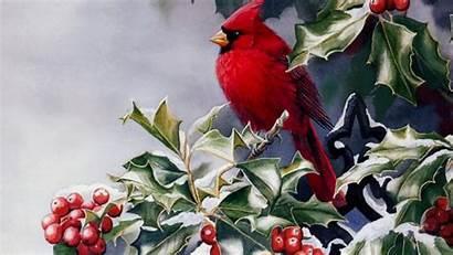 Cardinal Winter 1080p