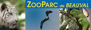 Billet Zoo De Beauval Leclerc : zooparc de beauval promoparcs com ~ Medecine-chirurgie-esthetiques.com Avis de Voitures