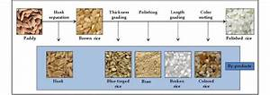 Flow Chart Of Milling Process From Paddy Rice To Polished Rice In Rice