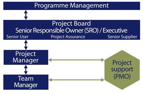role   programme  project management offices