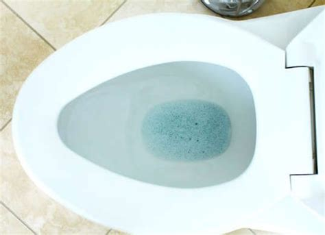 1000 ideas about clogged toilet on clean toilets detergent and drain cleaner