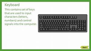 Computer Hardware: Parts & Functions