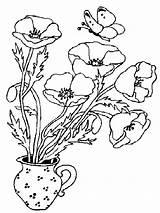 Coloring Poppies Poppy Flower Vase Kolorowanki Dzieci Maki Dla Flowers Bestcoloringpagesforkids Mohnblume Ausmalbilder Colouring Printable Simple Outline Malvorlagen sketch template