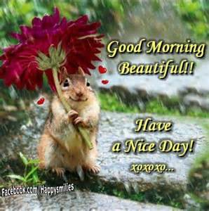 Good Morning Beautiful Rainy Day