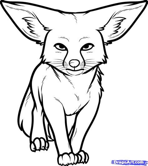 draw  kit fox kit fox step  step desert