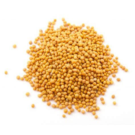 moutarde blanche en cuisine moutarde graines achat utilisation et recettes l