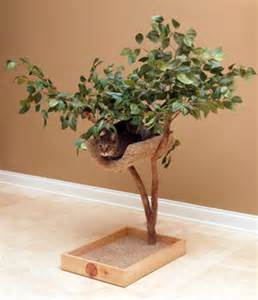 cat tree that looks like a tree cat trees that look like trees cat food and nutrition