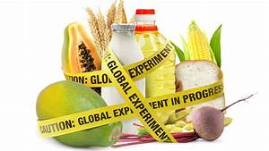 Read   U201cgmo Deception U201d What You Need To Know About