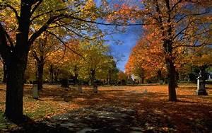 Kostenlose Bilder Herbst : kurzmitteilung beitragsformat ina s space ~ Yasmunasinghe.com Haus und Dekorationen