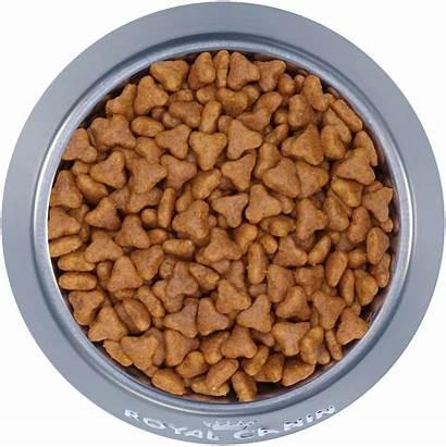 Dog Cat Royal Canin Response Gastrointestinal Fibre