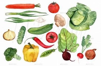 Vegetables Zelenjave Watercolor Sadja Clip Zelenjava Ki