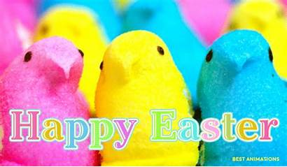 Easter Happy Wishes Peeps Funny Gifs Peep